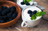 Two cups of creamy yogurt with blackberries — Stock Photo