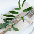 Stock Photo: Table setting with branches and berries
