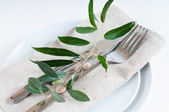 Table setting with branches and berries — Stock Photo