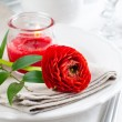Table setting with red buttercup flowers — Lizenzfreies Foto