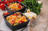 Two dishes of vegetable casserole — Stock Photo