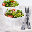 Diet vegetable salad  — Stock Photo