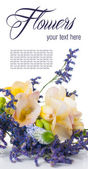 Bouquet of yellow and purple flowers — Stock Photo