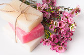 Handmade soap and cherry blossoms — Zdjęcie stockowe