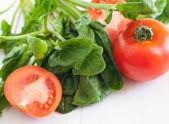 Tomater och bladspenat — Stockfoto
