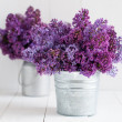 Two bouquet of lilac flowers  — Stock Photo #45245377