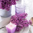 Table setting with lilac flowers — Stock Photo #45245497