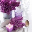 Table setting with lilac flowers — Stock Photo #45245511