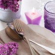 Table setting with lilac flowers — Stock Photo #45245619