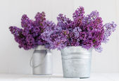 Two bouquet of lilac flowers — Stock Photo
