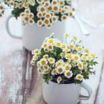 Vintage enamel mugs with chamomile — Stock Photo #47876425