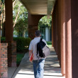 Student Walking To Class — Stock Photo #13242575