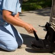 Adjusting Ankle Brace — Stock Photo