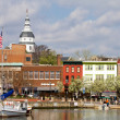 Annapolis Downtown Harbor — Stock Photo