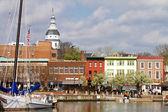 Annapolis Downtown Harbor — Stock Photo