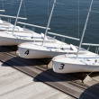 Rental Sailboats — Stock Photo