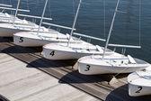 Rental Sailboats — Stock Photo