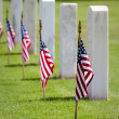 Stock Photo: Memorial Day Cemetery