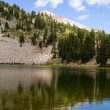 Stock Photo: Emerald Lake Lassen NP