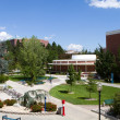 Stock Photo: University Of NevadCampus