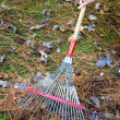 Raking Fall Leaves — Foto Stock