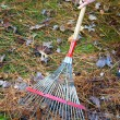 Stock Photo: Raking Fall Leaves