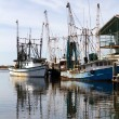 Docked Shrimp Boats — Stock Photo #37717263
