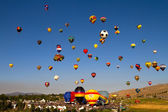Great Reno Balloon Race — Stock Photo