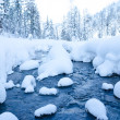 Forest stream in winter — Stock Photo #18759973