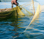 Trap fishing — Stockfoto