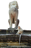 Monkey statue in Angkor with marmoset — Stock Photo