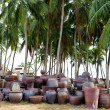Stock Photo: Earthenware pots