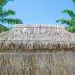 Stockfoto: Thatched hut
