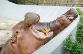 Hippopotamuses — Stock Photo