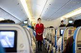 Stewardess at work — Stock Photo