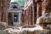 Ta Prohm in Angkor, Cambodia — Stock Photo