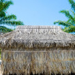 Thatched hut — Foto Stock