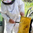 Beekeeper at work — Stock Photo #29462987