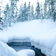 Winter forest non freezing stream — Stock Photo