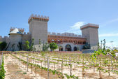 RD Wine Castle, Mui Ne, Vietnam — Stock Photo