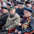 Stock Photo: Honourable RussiWWII veterans