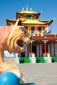 Plaster tiger in front of buddhist temple — Stock Photo