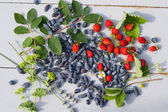 Fresh honeysuckle and strawberry — Stockfoto