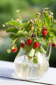 Bouquet of wild strawberry in a glass jug — Stock Photo
