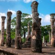 Granite columns the ancient city of Polonnaruwa in Sri Lanka. - Stock Photo