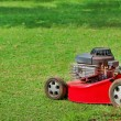 Lawn mower on green grass — Stock Photo #12279492