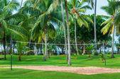 Voleybol sahası ile tatil tropikal tatil — Stok fotoğraf