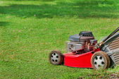 Lawn mower on green grass — Stok fotoğraf