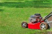在绿色草地上草坪割草机 — 图库照片