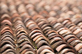 Old grunge tile roof — Stock Photo